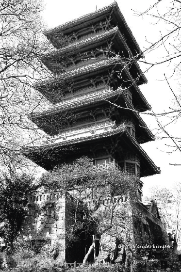 The Japanese Tower